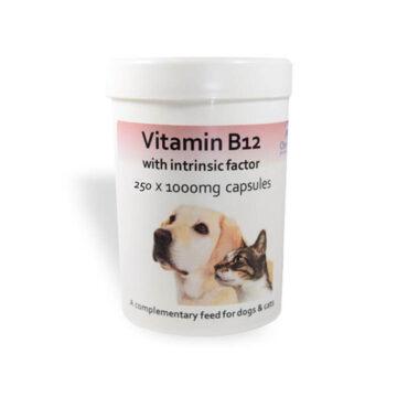 Chemeyes B12 kapsule za pse in mačke, 100 kapsul